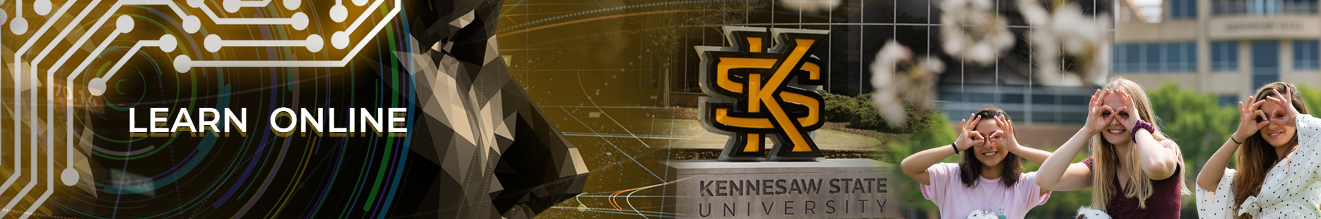 learn online at KSU